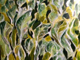 summer kale